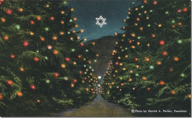 Christmas Tree Lane.Mary Mallory Hollywood Heights Altadena S Lovely