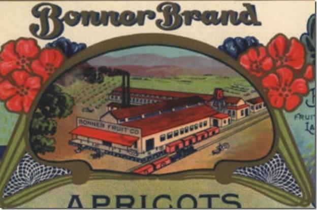 Bonner Brand